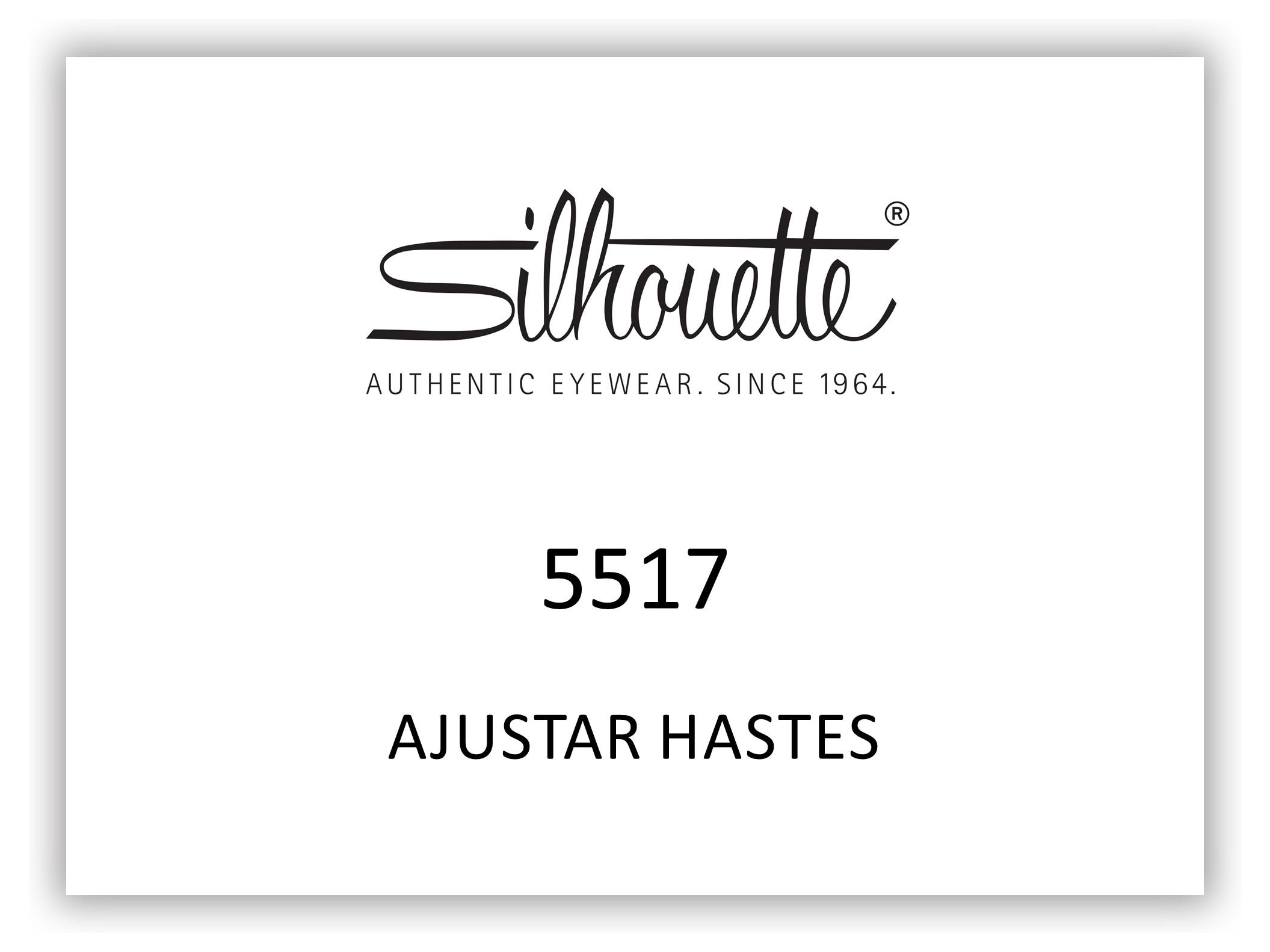 5517-HASTES